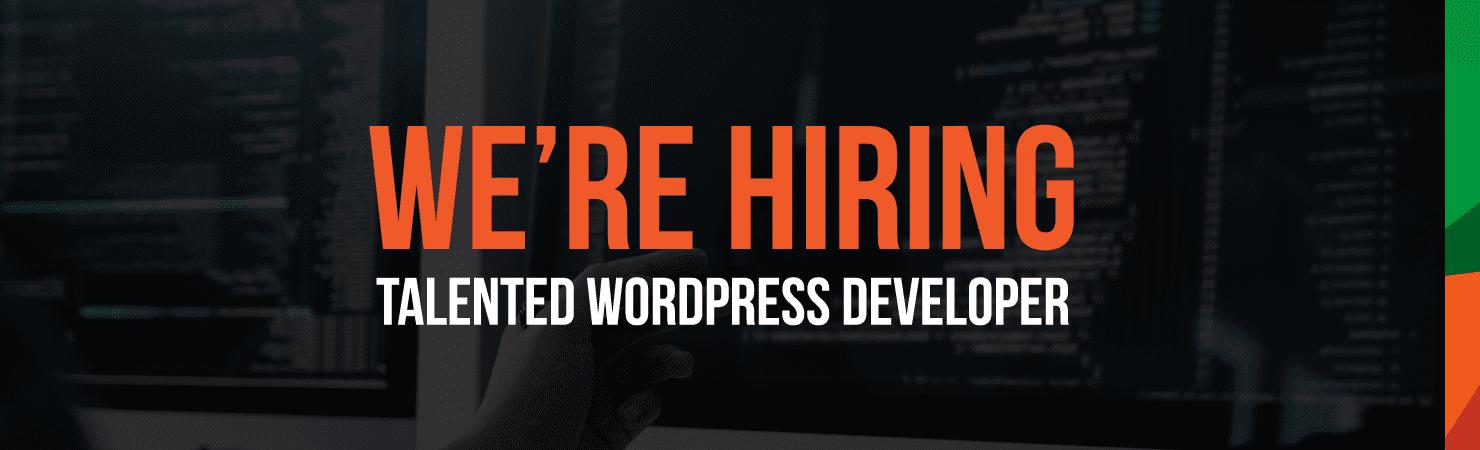 Talented Wordpress Developer